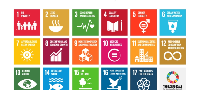 Communicating the Sustainable Development Goals to the public: why it's important and how to do it
