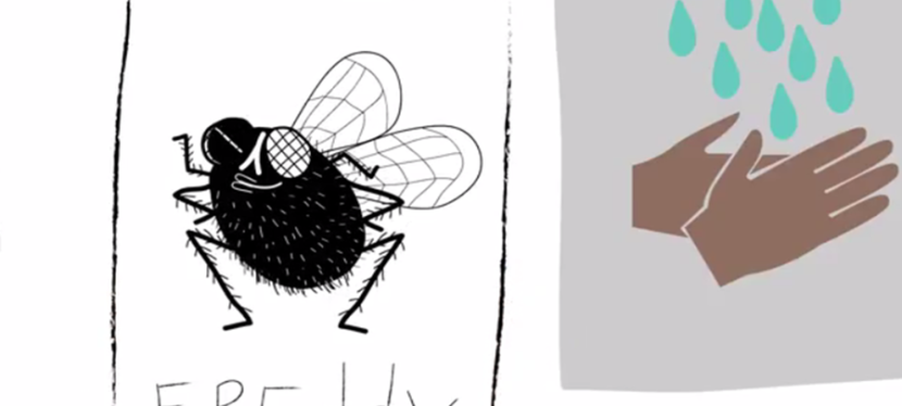 Freddy the Fly: A lesson in effective development communications